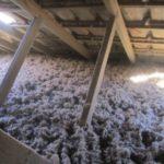 combles isolés laine de roche soufflée projetée rockwool